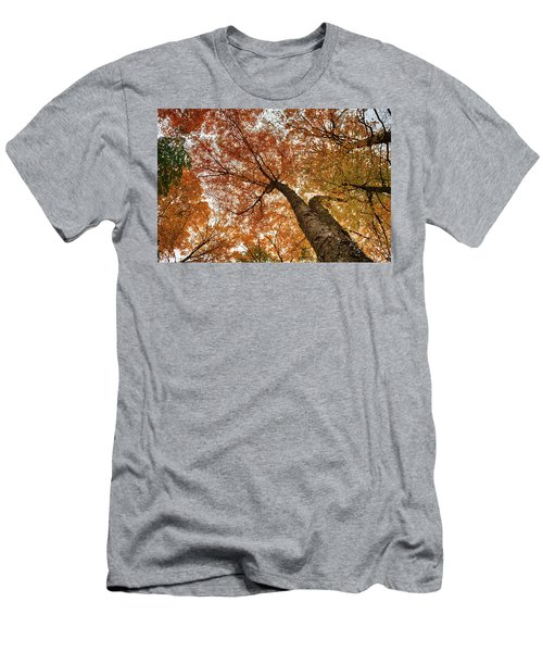 Vermont Fall Foliage Views Men's T-Shirt (Athletic Fit)