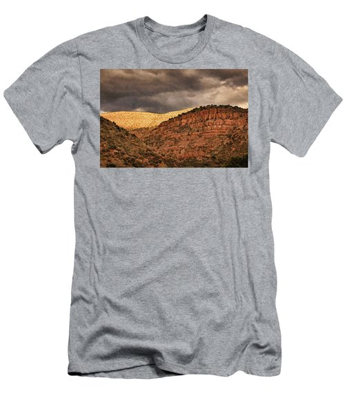 View From A Train Pnt Men's T-Shirt (Athletic Fit)