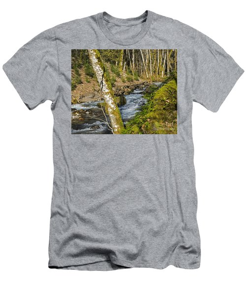 Views Of A Stream, I Men's T-Shirt (Slim Fit) by Chuck Flewelling