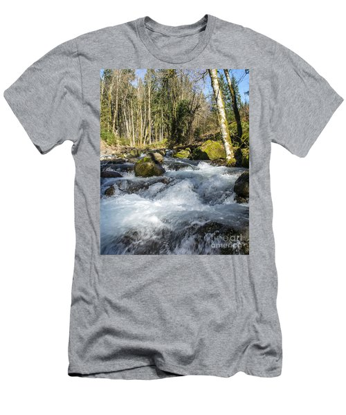 Views Of A Stream, IIi Men's T-Shirt (Slim Fit) by Chuck Flewelling