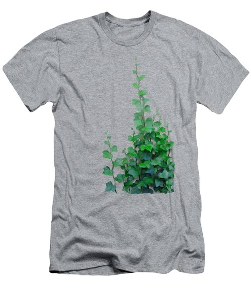 Vines By The Wall Men's T-Shirt (Athletic Fit)