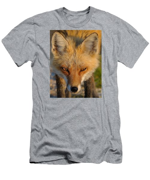 Vixen Men's T-Shirt (Athletic Fit)