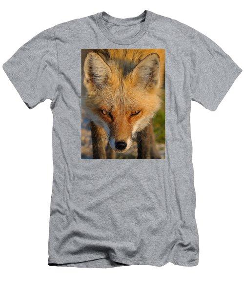 Vixen Men's T-Shirt (Athletic Fit)