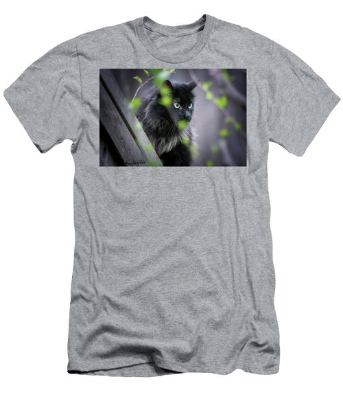Waiting In The Wing Men's T-Shirt (Athletic Fit)
