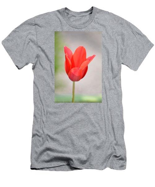 Warm Pink Tulip Men's T-Shirt (Slim Fit) by William Bartholomew