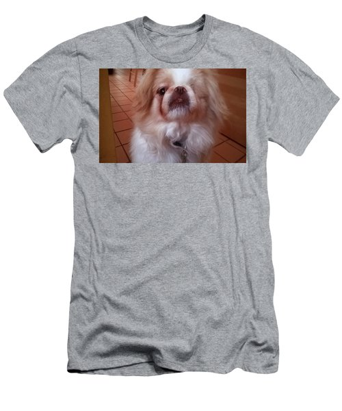 Men's T-Shirt (Athletic Fit) featuring the photograph Wasabi The Wonder Dog by Roger Bester