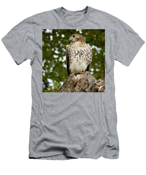 Watchful Eye Men's T-Shirt (Slim Fit) by Jim Gillen