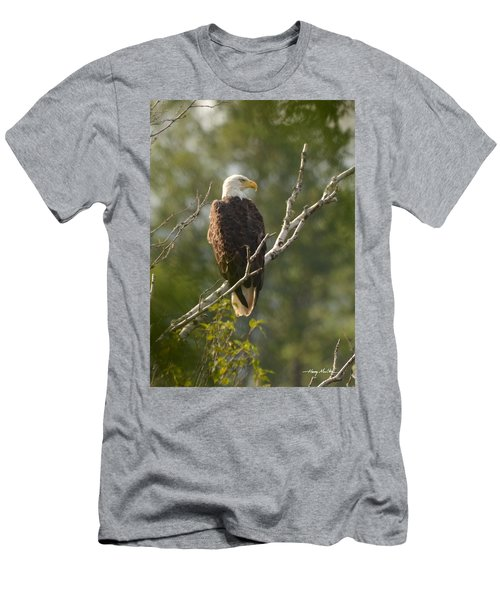 Watching Eagle Men's T-Shirt (Athletic Fit)