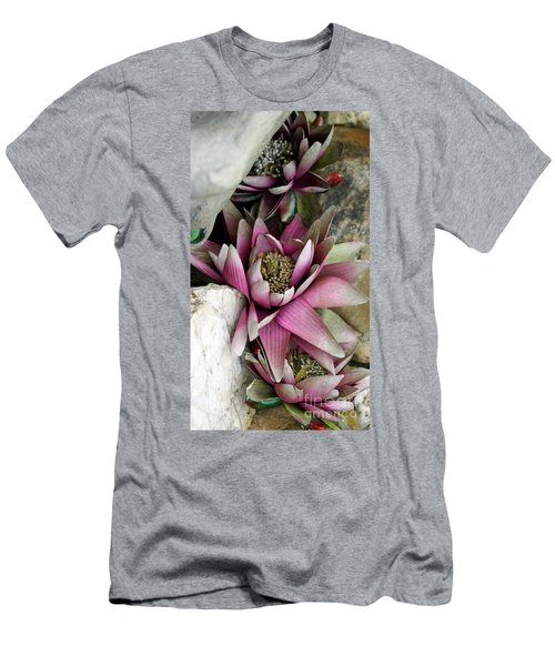 Water Lily - Seerose Men's T-Shirt (Athletic Fit)