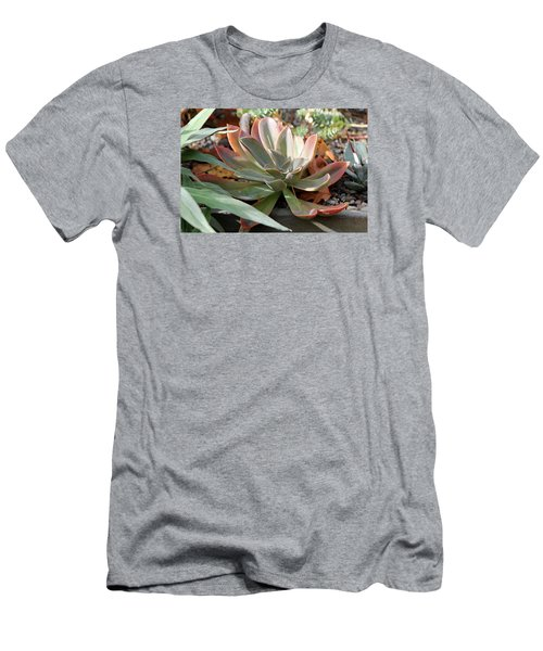 Wax Rose Men's T-Shirt (Slim Fit) by Deborah  Crew-Johnson