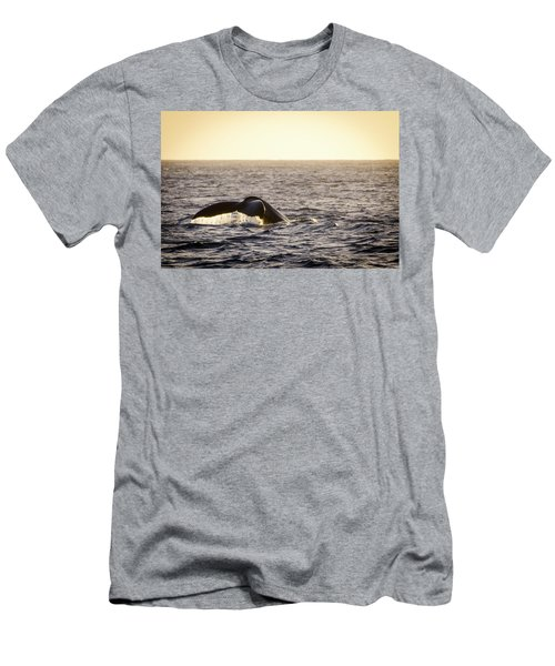 Whale Fluke Men's T-Shirt (Athletic Fit)
