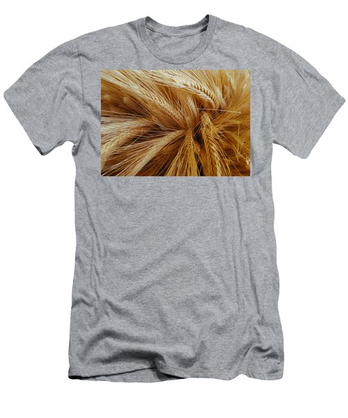 Wheat In The Sunset Men's T-Shirt (Athletic Fit)