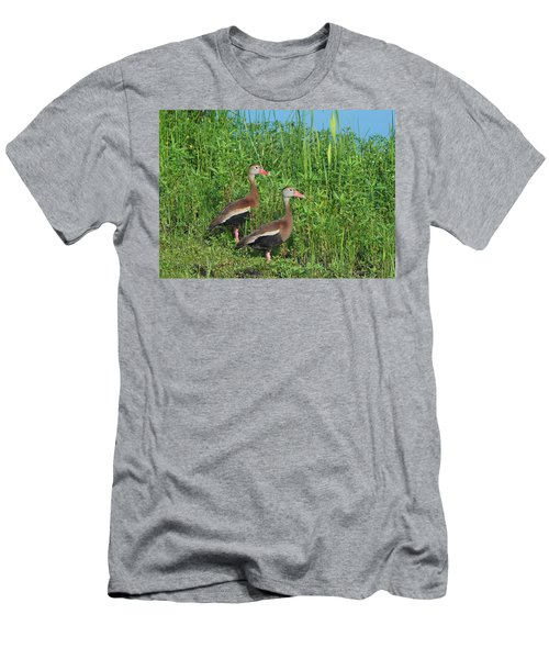 Whistling Ducks Men's T-Shirt (Athletic Fit)