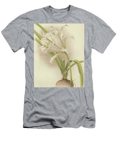 White Amaryllis   Ismene Andreana Men's T-Shirt (Athletic Fit)