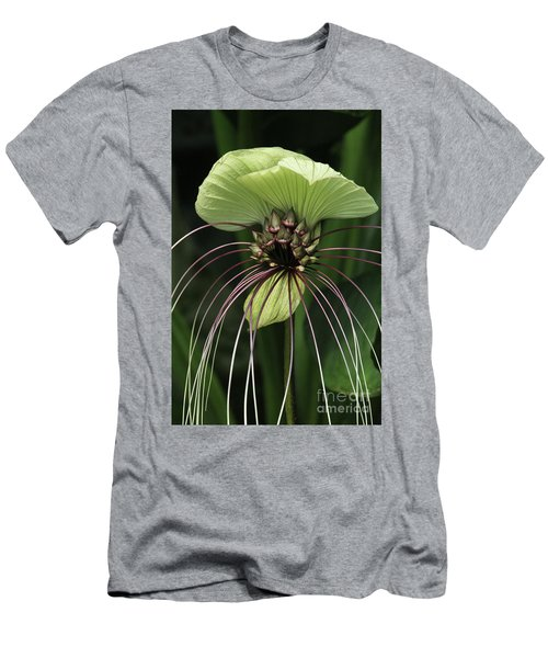 White Batflower Men's T-Shirt (Athletic Fit)