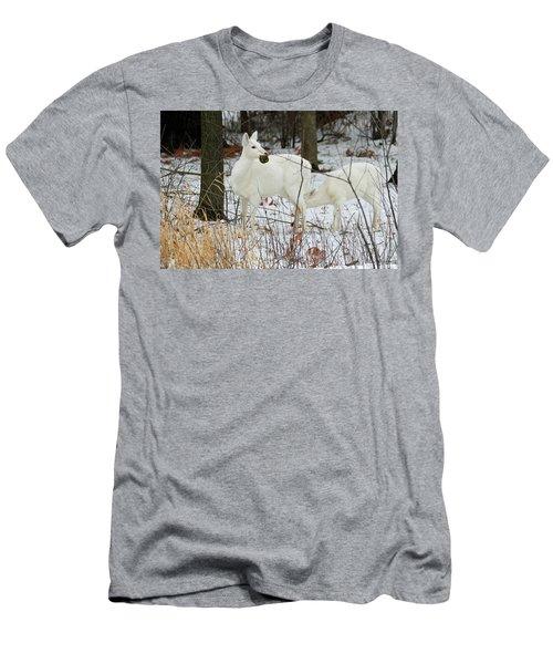 White Deer With Squash 2 Men's T-Shirt (Slim Fit) by Brook Burling