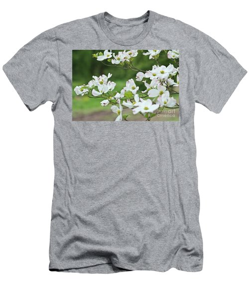 White Flowering Dogwood Men's T-Shirt (Slim Fit) by Ann Murphy