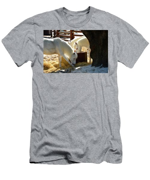 Men's T-Shirt (Slim Fit) featuring the photograph White Horses Feeding by David Lee Thompson