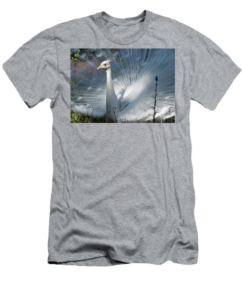 White Peacock Men's T-Shirt (Slim Fit) by Lamarre Labadie