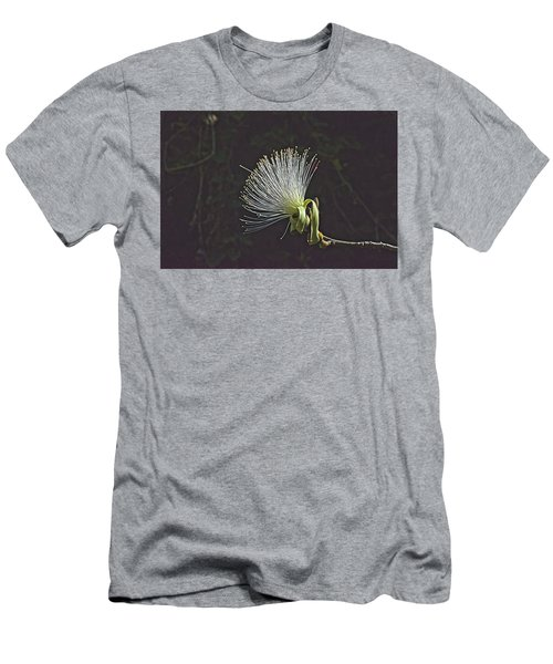 White Shaving Brush Pseudobombax Flower Men's T-Shirt (Athletic Fit)