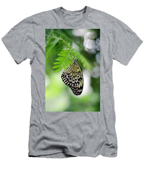White Tree Nymph Butterfly 2 Men's T-Shirt (Slim Fit) by Marie Hicks