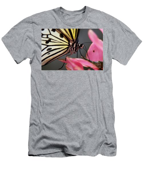 White Tree Nymph Butterfly Men's T-Shirt (Athletic Fit)