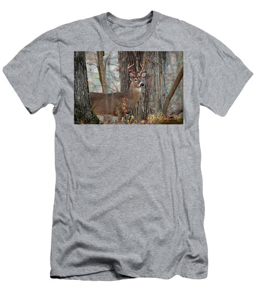 Whitetail #60 Men's T-Shirt (Athletic Fit)