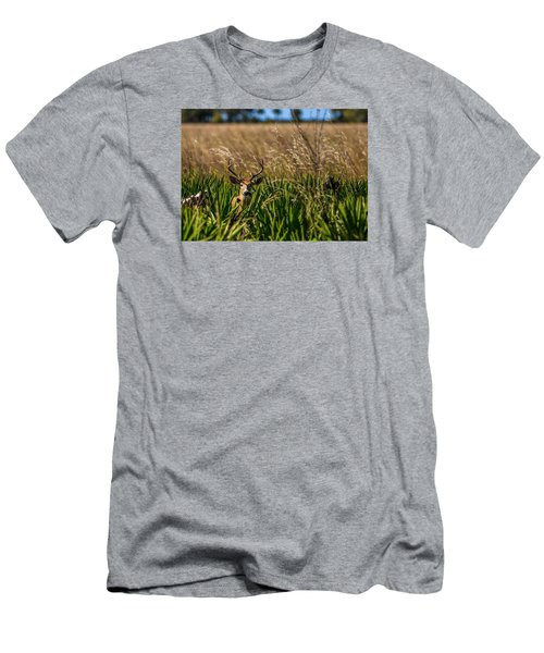 Whitetail Men's T-Shirt (Athletic Fit)