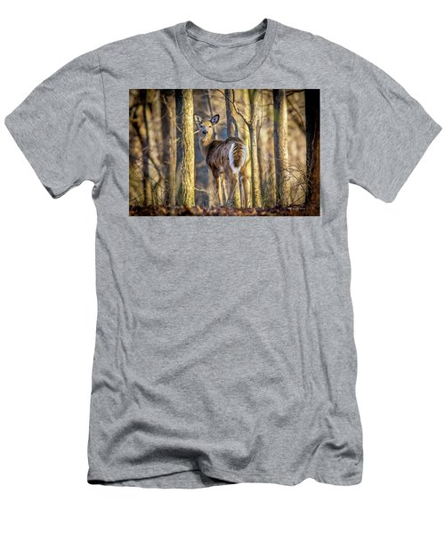 Whitetail Winter Morning Men's T-Shirt (Athletic Fit)