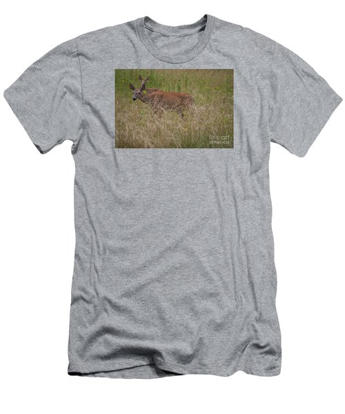 Whitetail With Fawn 20120707_09a Men's T-Shirt (Slim Fit) by Tina Hopkins