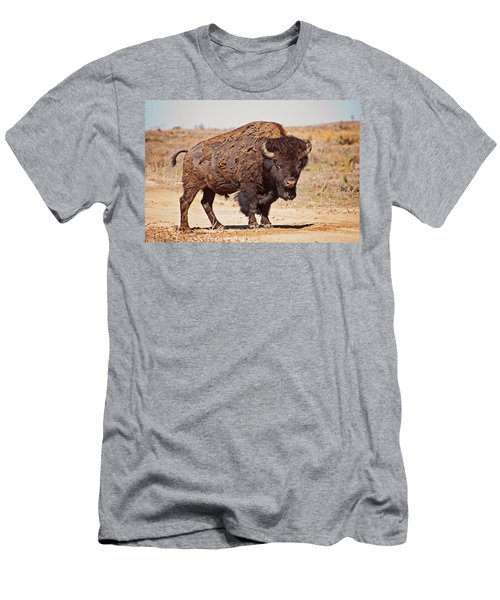 Wild Bison Men's T-Shirt (Athletic Fit)