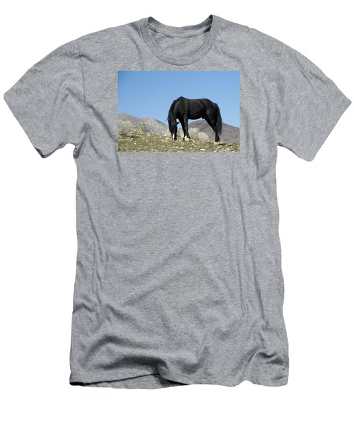 Wild Black Stallion Horse Men's T-Shirt (Athletic Fit)