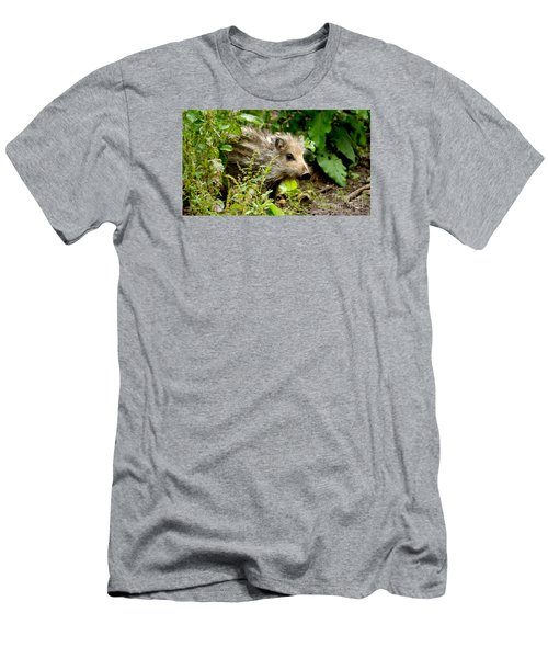 Wild Boar Baby Men's T-Shirt (Athletic Fit)