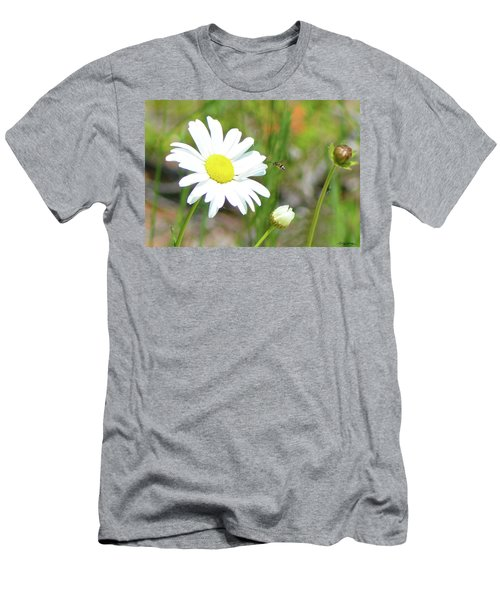 Wild Daisy With Visitor Men's T-Shirt (Athletic Fit)