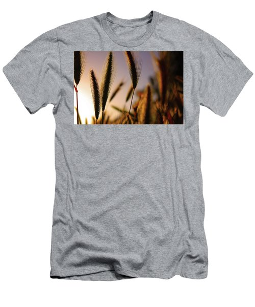 Wild Grasses At Sunset Men's T-Shirt (Athletic Fit)
