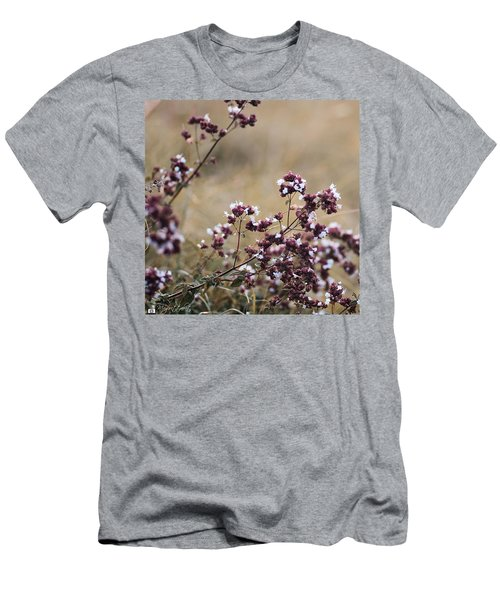Wild Herbs  #herbs Men's T-Shirt (Athletic Fit)