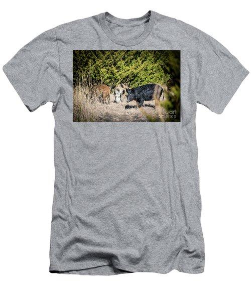 Wild Hogs Men's T-Shirt (Athletic Fit)