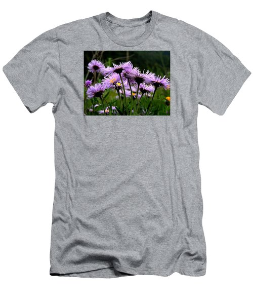 Wild Mountain Asters Men's T-Shirt (Athletic Fit)