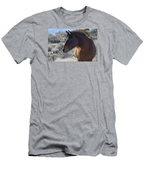 Wild Mustang Mare Men's T-Shirt (Athletic Fit)