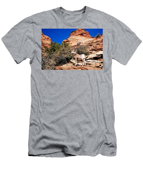 Wild Ram At Zion Men's T-Shirt (Athletic Fit)