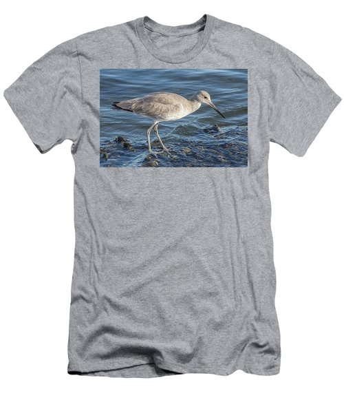 Willet In Winter Plumage Men's T-Shirt (Athletic Fit)