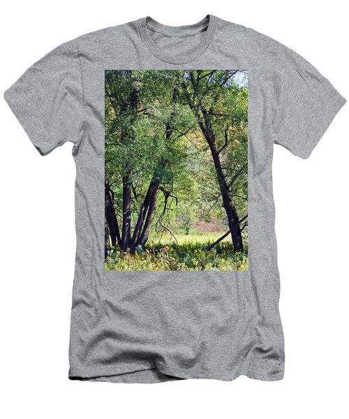 Willow Cathedral Men's T-Shirt (Athletic Fit)