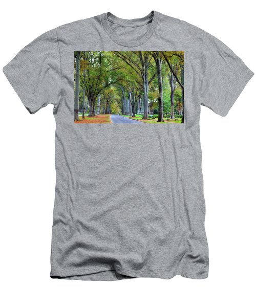 Willow Oak Trees Men's T-Shirt (Athletic Fit)