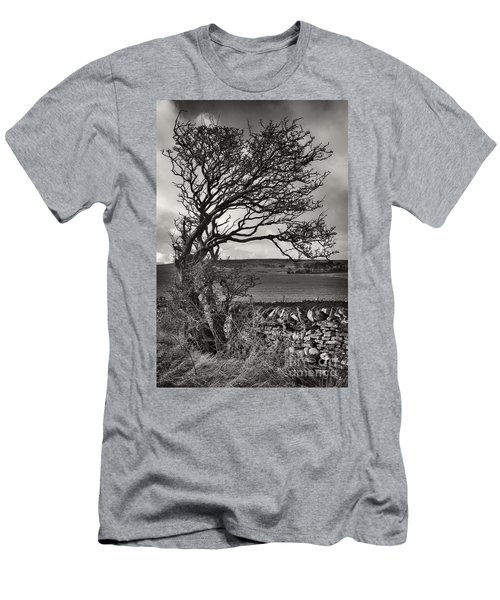 Windswept Tree In Winter Men's T-Shirt (Athletic Fit)