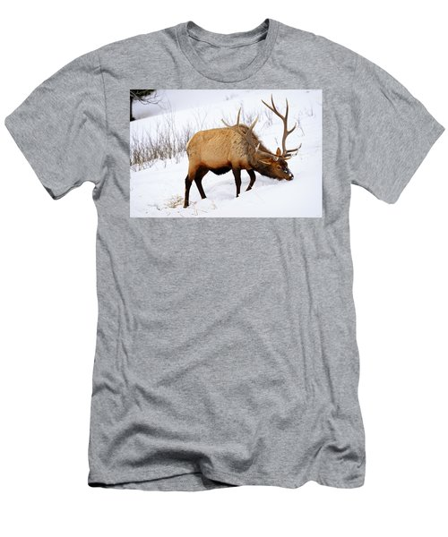 Winter Bull Men's T-Shirt (Athletic Fit)