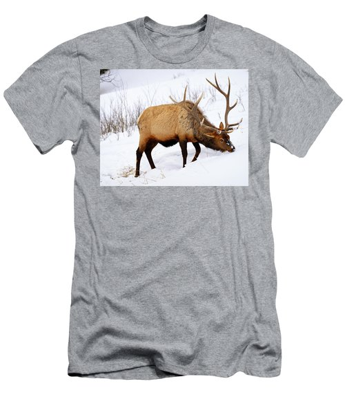 Winter Bull Men's T-Shirt (Athletic Fit)