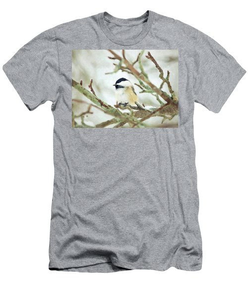 Winter Chickadee Men's T-Shirt (Athletic Fit)
