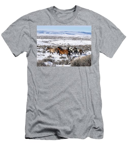 Winter In Sand Wash Basin - Wild Mustangs On The Run Men's T-Shirt (Athletic Fit)
