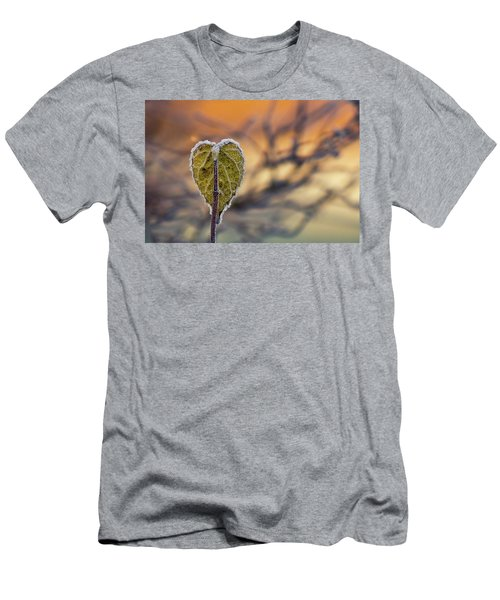 Winter Morning Men's T-Shirt (Athletic Fit)