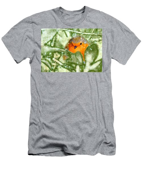 Men's T-Shirt (Athletic Fit) featuring the photograph Winter Robin by LemonArt Photography